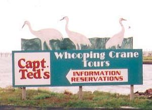 Captain Ted's Whooping Crane Tour