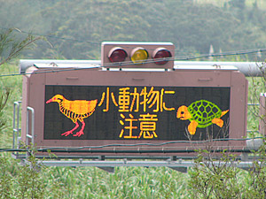Okinawa Road Sign